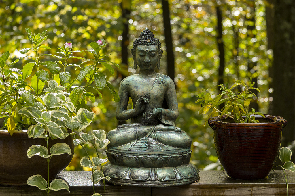 Il Buddha in giardino
