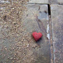 """Citazioni """"L'arte di amare"""" di Erich Fromm"""